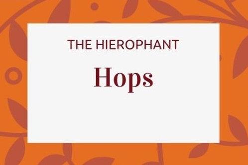 Hops - Humulus lupulus