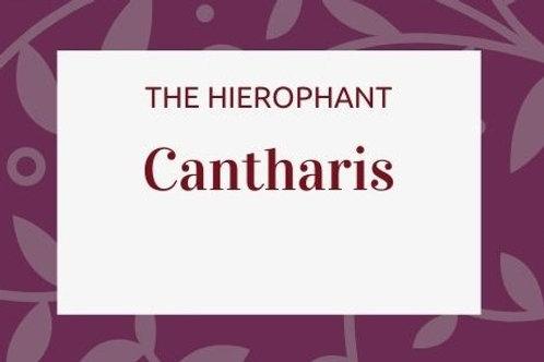 Cantharis Vesicatoria