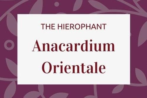 Anacardium Orientale