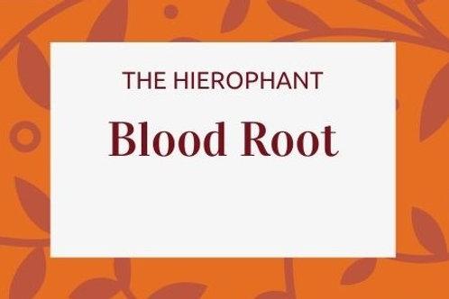 Blood Root - Sanguinaria canadensis