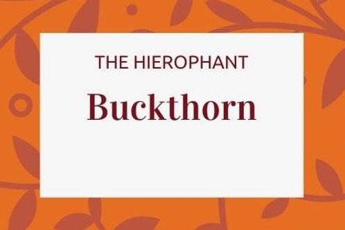 Buckthorn -