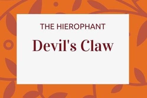 Devil's Claw - Harpagophytum procumbens
