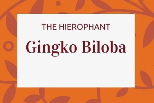 Gingko -Gingko biloba