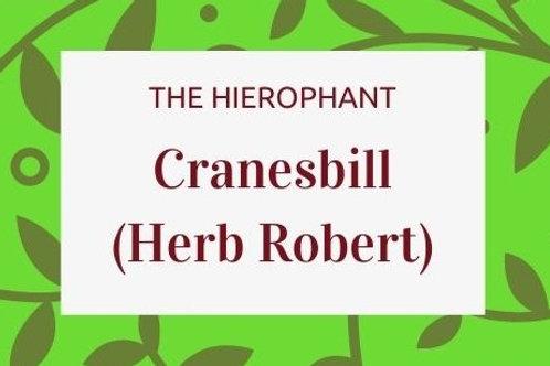 Cranesbill (Herb Robert)