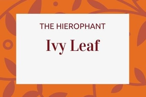 Ivy Leaf - Hedera helix