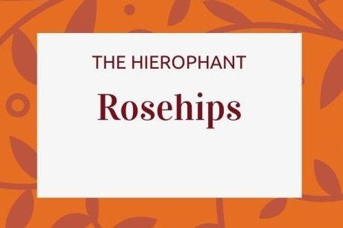 Rosehips - Rosa canina