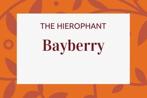 Bayberry -