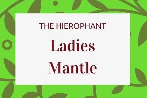 Ladies Mantle