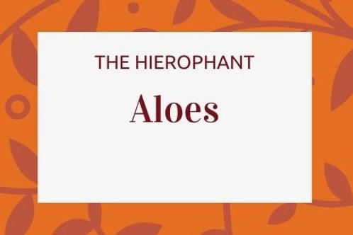 Aloes -