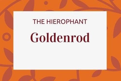 Goldenrod - Solidago canadensis