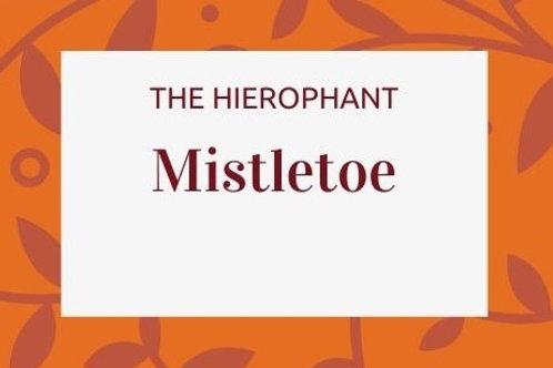 Mistletoe -