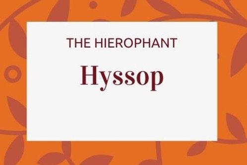 Hyssop - Hyssopus officinalis