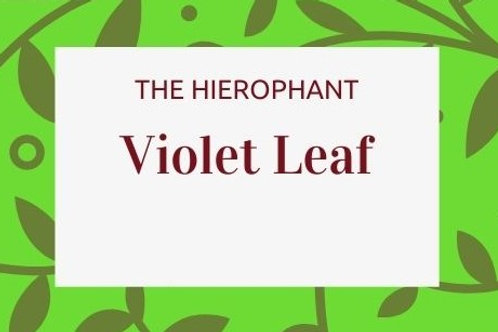 Violet Leaf