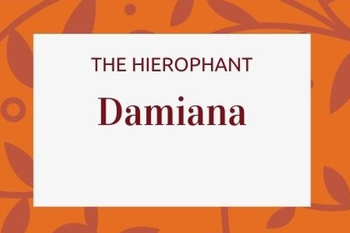 Damiana - Turnera diffusa