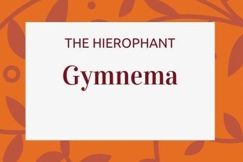 Gymnema - Gymnema sylvestre