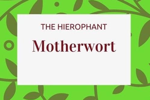 Motherwort