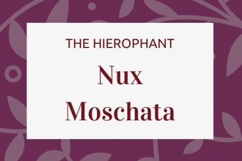 Nux Moschata