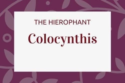 Colocynthis