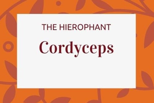 Cordyceps -