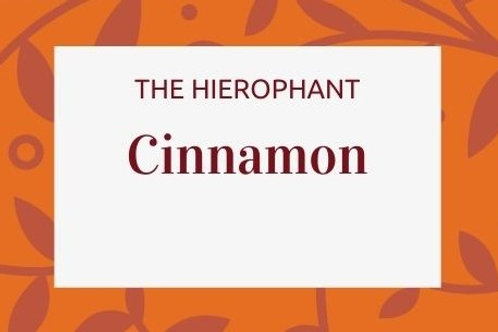 Cinnamon - Cinnamomum zeylanicum