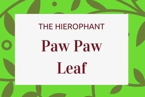Paw Paw Leaf