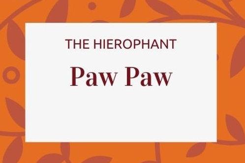 Paw Paw Leaf - Carica papaya