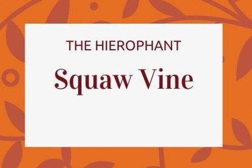 Squaw Vine -Mitchella repens