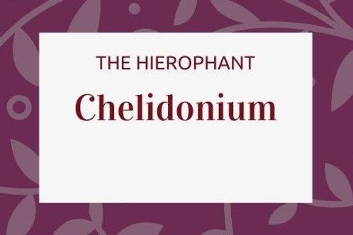 Chelidonium Majus