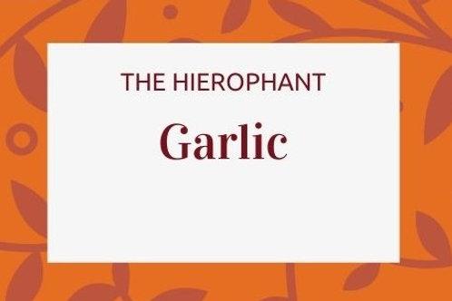 Garlic - Allium sativa