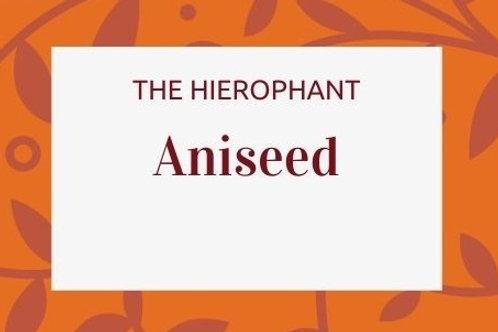 Aniseed -  Pimpinella anisum