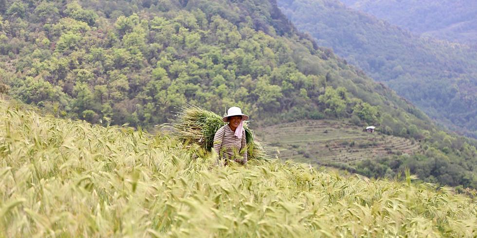 Bhutan - 10D9N Trongsa Village Trek