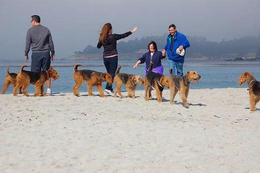 2012 Carmel Beach wide.jpg