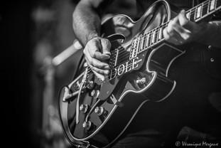 Michel's guitar