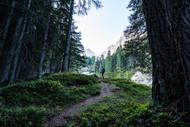 Osttirol-7305748.jpg