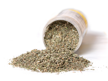 Is Catnip Safe for your Dog?