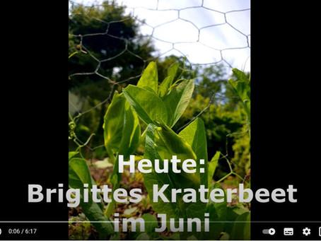 Brigittes Kraterbeet im Juni