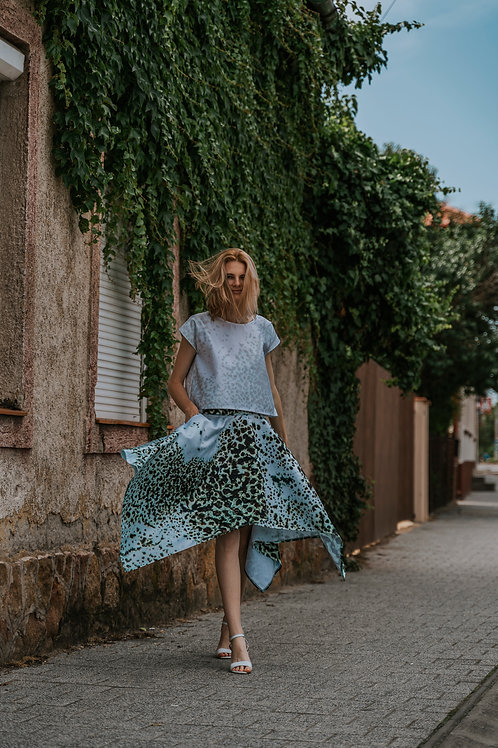 Printed Skirt and Top