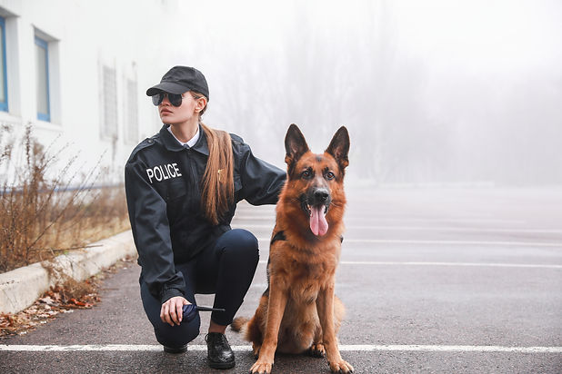 Female police officer with dog patrollin