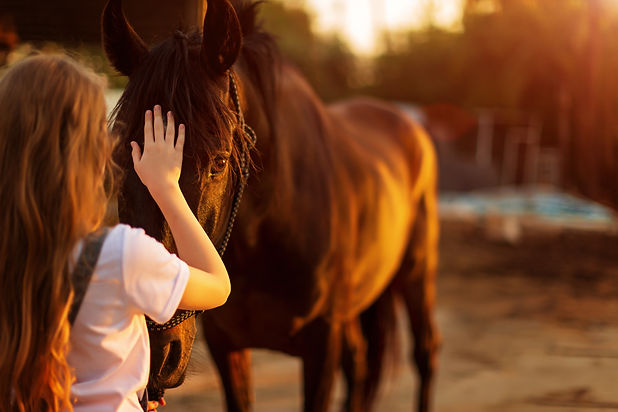 Young blonde girl stroking a brown horse