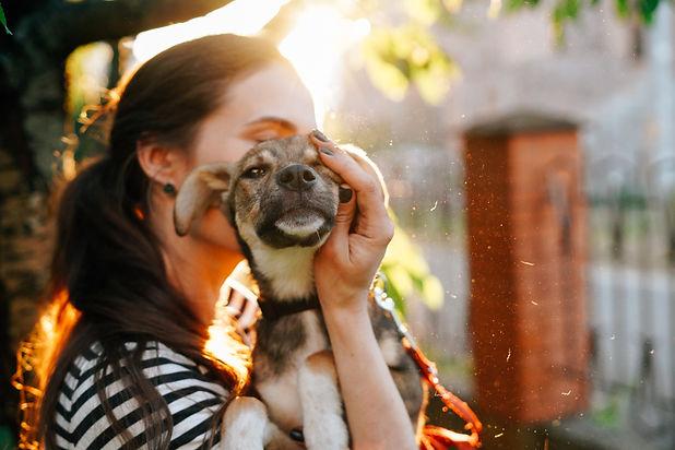 Volunteer holding homeless dog in beauti