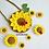 Thumbnail: Crochet sunflower big pack
