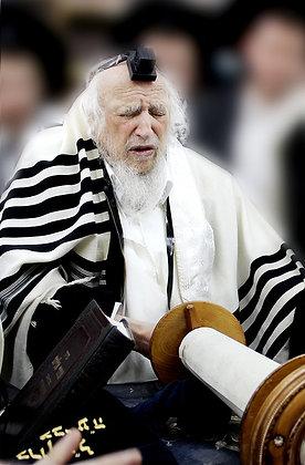הרב שמואל זלמן אויירבך