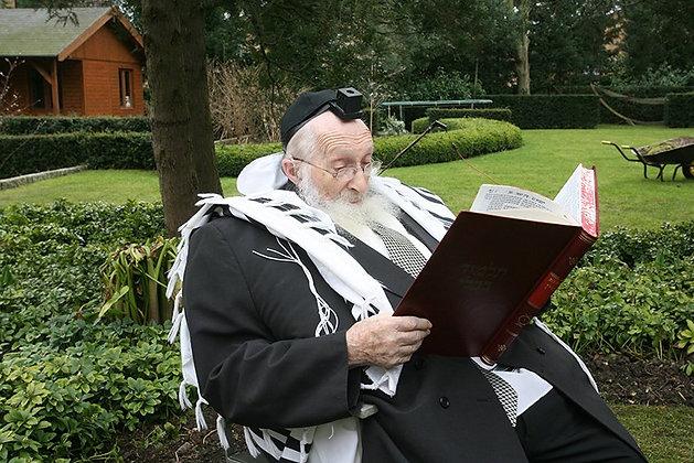 הרב שיינברג בגינה