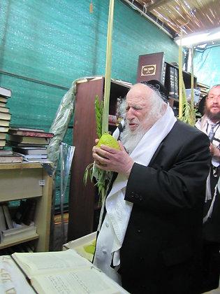 הרב שמואל אויירבך עם ארבעת המינים