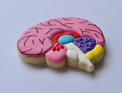 Brain Sugar Cookie