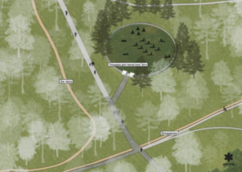 Прогулочная зона в дзержинском парке кул