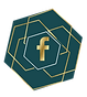 Facebook Icon The PR Guild.png