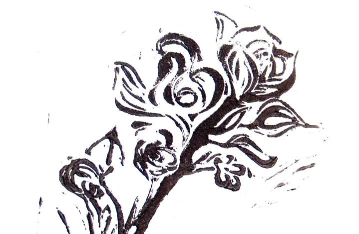 Buschrosen