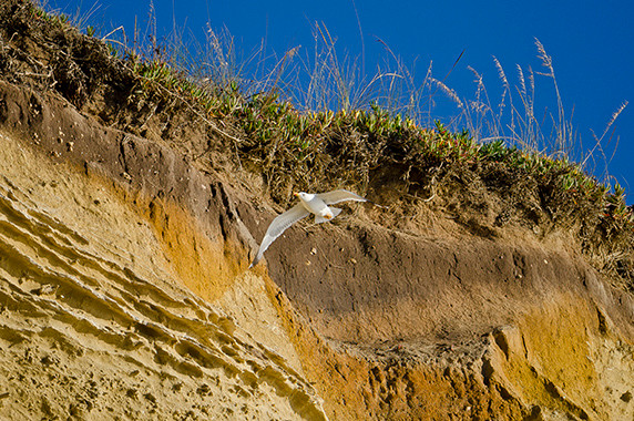 Zambujeira do Mar © Luc Teper