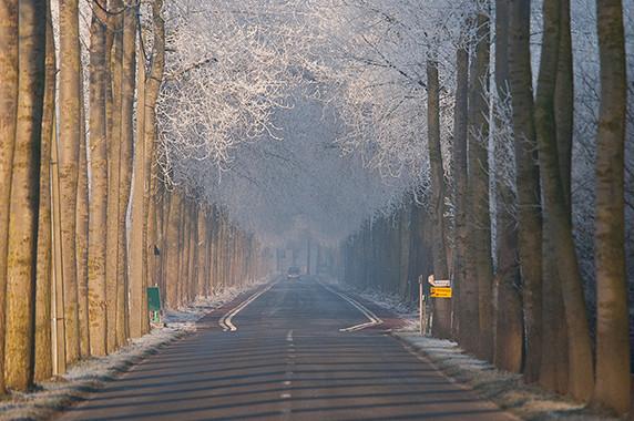 La route qui mène à Damme © Luc Teper